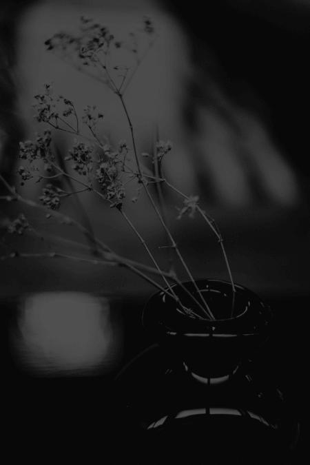Gece Rüzgârları – Bölüm 9: Merkez Binada Hatıralar