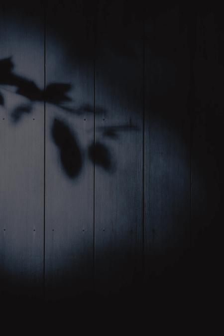 Gecenin Siyahına